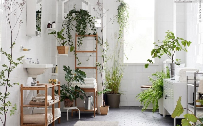 Natural Bathroom Ideas: 12 Ways To Create An Eco Bathroom