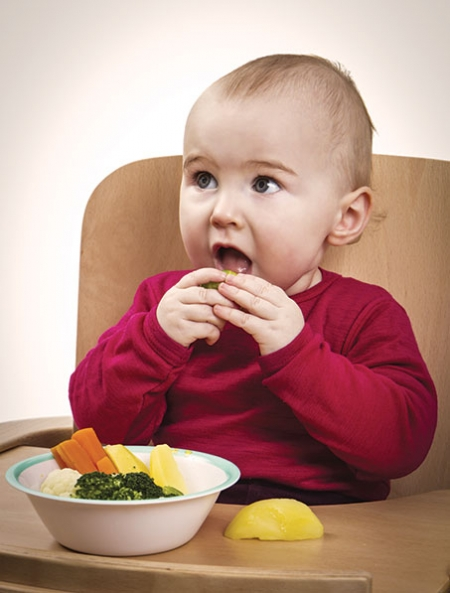 'Baby-led weaning is slightly easier if you are breastfeeding because it fits with the ethos of baby deciding how much they want'