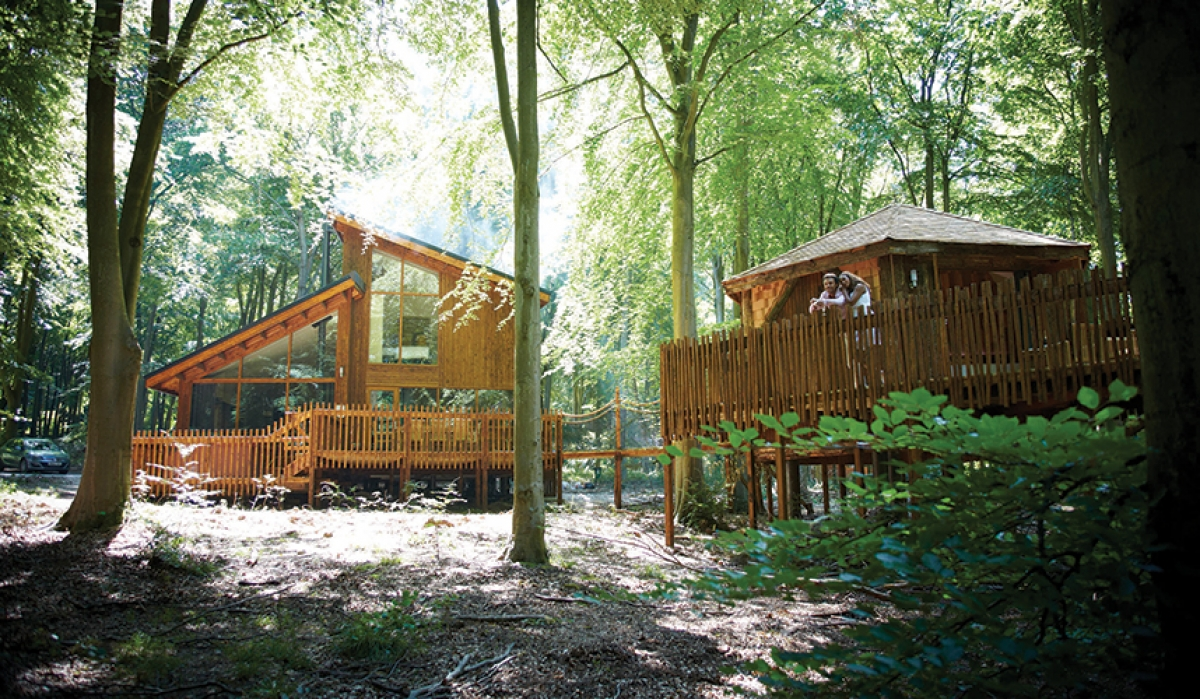 Win A Luxury Forest Holidays Escape The Green Parent