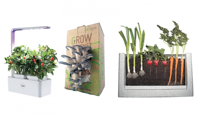 1. Grow Pod 2, £65 seedpantry.co.uk 2. Mushroom Growing Kit, £17, grocycle.com  3. Root Vue Farm, £40 insectlore.co.uk